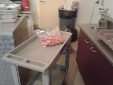 Chicken Defrosting Next to Trash/Sebastian Garrett-Singh